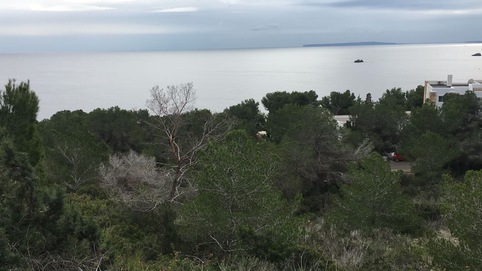 4 plots for sale with amazing views in Roca Lisa